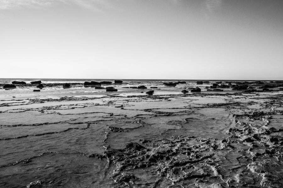 Cabo Trafalgar 16th Jan_-12